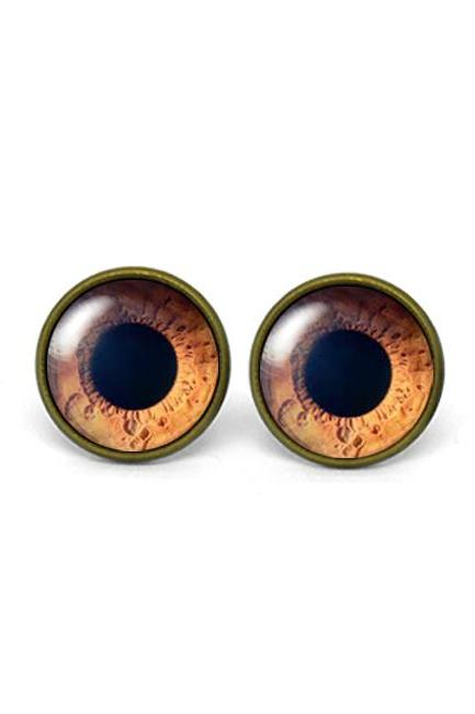 X543- Iris, Pupil, Eye, Eyeball, Glass Dome Post Earrings