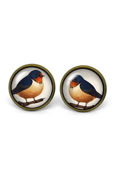 X261- Barn Swallow, Glass Dome Post Earrings
